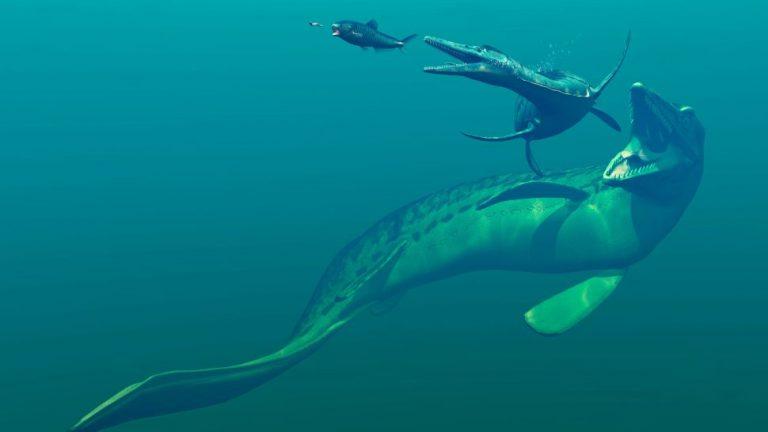 Mosasaurus: Apex ocean predator of the dinosaur age